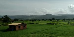 Off Mumbai - Goa Highway (NH 17)