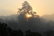 Sunrise at Kaziranga