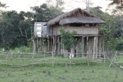 Forest Ranger Camp at Kaziranga National Park.